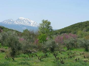 Деревушка Лутро в Хора Сфакион (Крит)