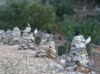 Каменный парк Аскос, остров Закинф, Греция