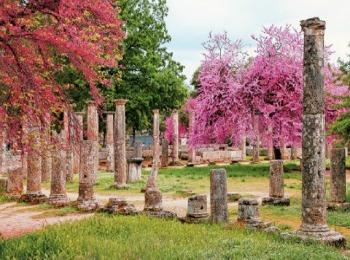 Древняя Олимпия в мае