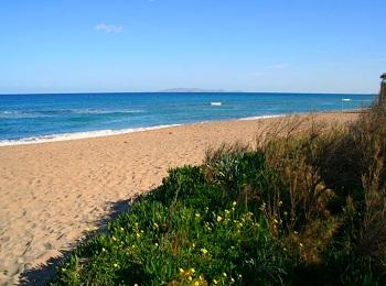 Дикий участок пляжа