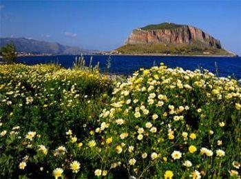 Цветущая Греция в мае