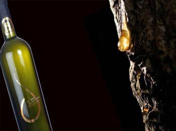 Греческое смоляное вино рецина
