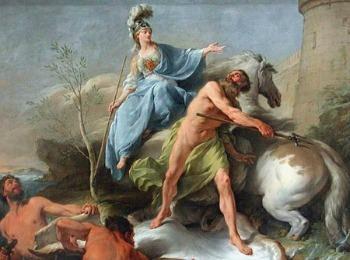 Олива - подарок богини Афины жителям Аттики