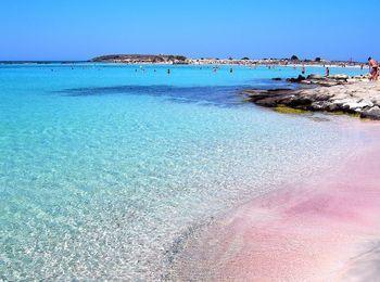 Розовый песок, а вода совершенно волшебного бирюзового цвета