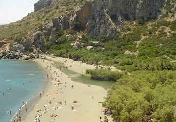 Пальмовый пляж с отдыхающими туристами