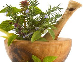Растения применялись для лечения волос