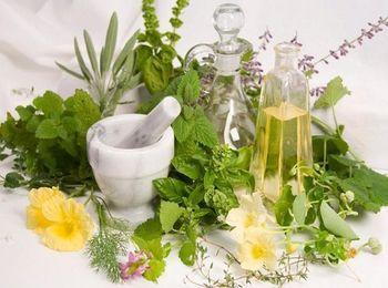 Чудодейственные травы используются в натуральной косметике