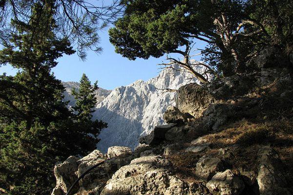 Ущелье можно посетить с апреля до конца октября